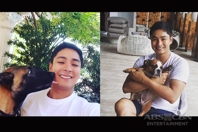 IN PHOTOS: Ang mga cute pets ni Coco Martin!