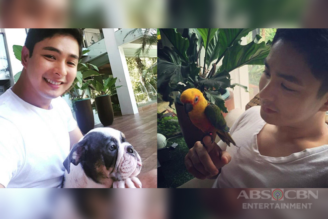 IN PHOTOS: Ang mga cute pets ni Coco Martin