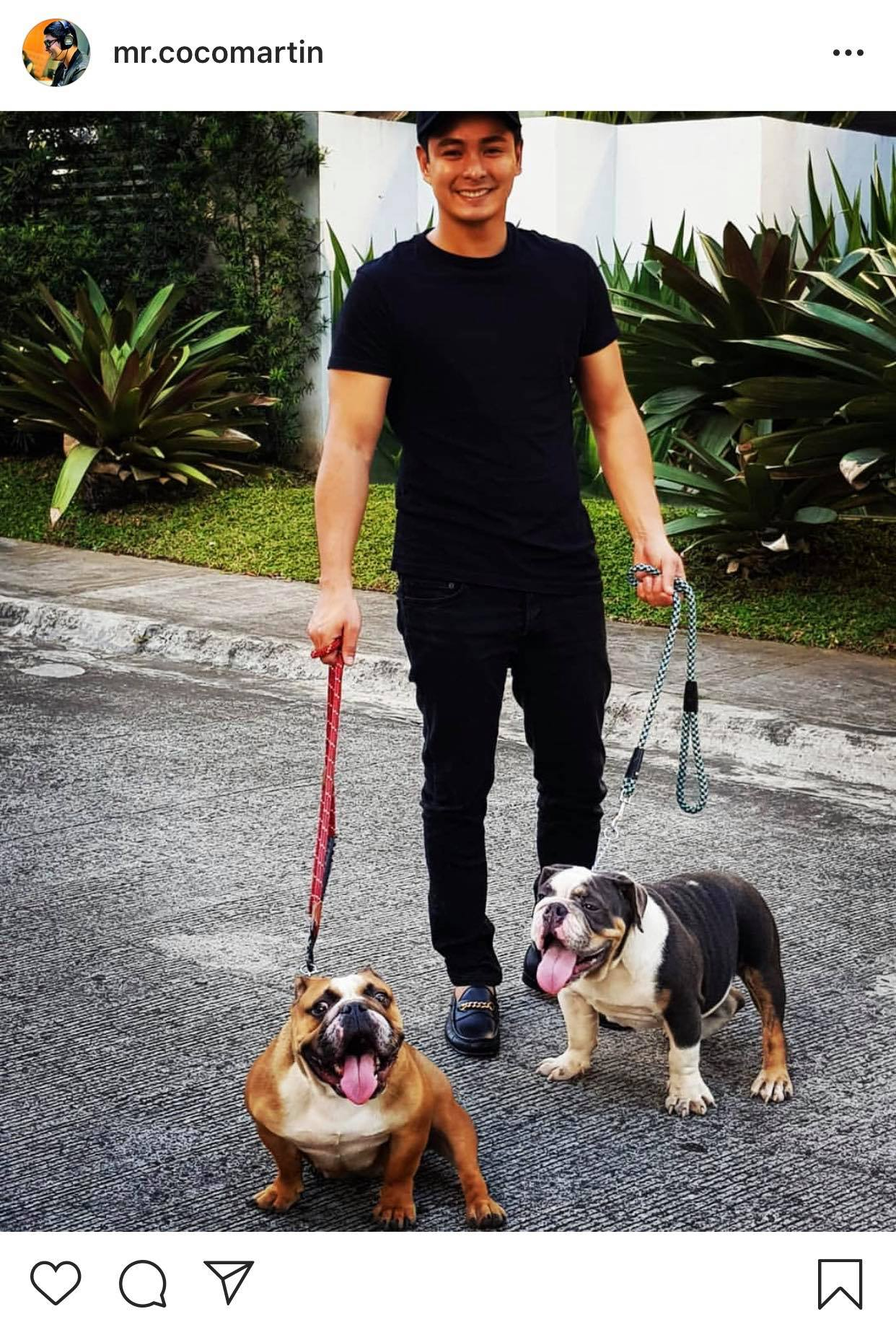 LOOK: Meet the cute additions to Coco Martin's adorable pets