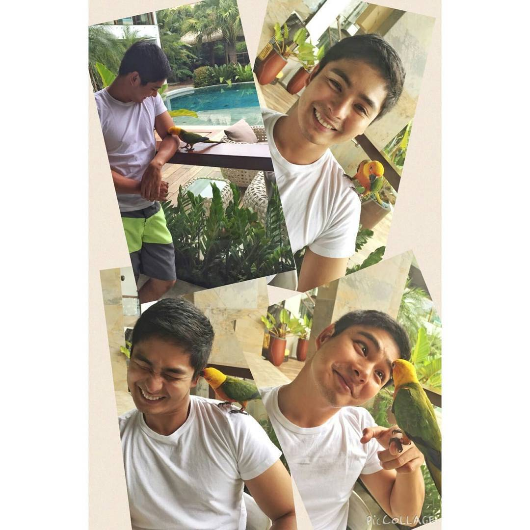 Photos of Coco Martin with his lovable pets